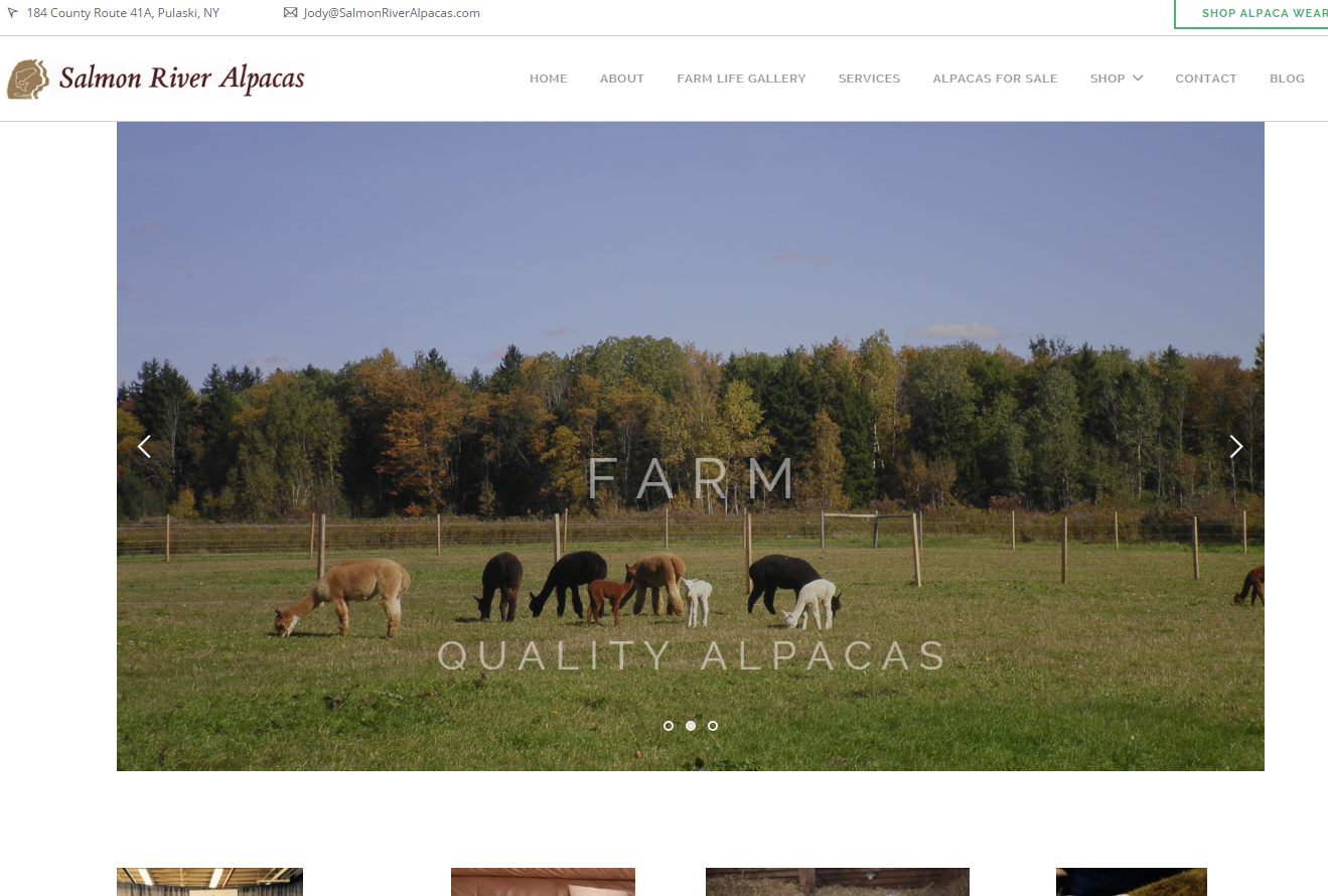Wordpress web site salmon river alpacas