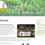 EG Baseball website screen shot
