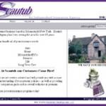 Scatub Insurance website